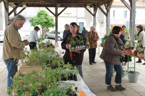 2015.05.08  PHOTO CL BOURSE AUX PLANTES